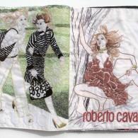 Hikaru Miyakawa, Vogue (2), 2007, tissu, fil coton, 28,5x22 cm