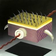Marcel Tasler, o.T., 2011, acryl, 50x50 cm